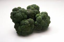 broccoli Royaltyfri Fotografi