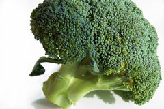 Broccoli Royalty-vrije Stock Foto's