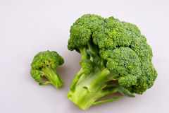 Broccoli. In the white backgroud Stock Photo
