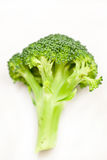 Broccoli. On the white background Stock Photography