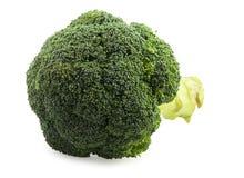 Broccoli. Fresh broccoli on white background Royalty Free Stock Photos