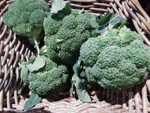 broccoli photo libre de droits