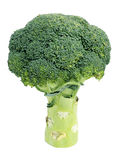Broccoli Stock Photography