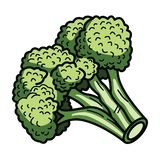 Broccoli royalty free illustration
