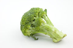 Broccoli. Close up view of Broccoli with a white background Royalty Free Stock Photos