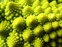Broccoli. A closeup of some broccoli royalty free stock images