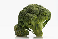 Broccoli. Raw broccoli over white background Stock Photos