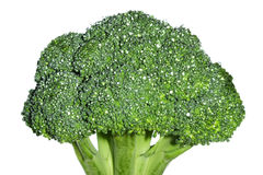 Broccoli. Fresh broccoli. Isolated over white background Royalty Free Stock Photo