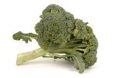 Broccoli Royalty-vrije Stock Fotografie