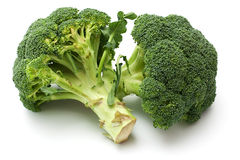 Broccoli. Two green broccoli  on White Background Royalty Free Stock Images