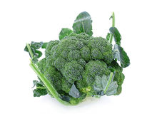 broccoli Arkivbild