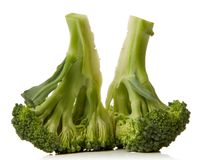 Broccoli. Close-up of a broccoli isolated over white background Royalty Free Stock Photography