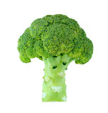 Broccoli. Isolated on white background Royalty Free Stock Photos