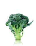 Broccoli. Organic broccoli  isolated on white background Stock Images