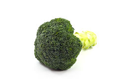 Broccoli. Stock Photo