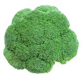 Broccoli. Fresh broccoli, isolated on white Stock Photos
