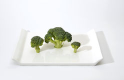 Broccoli. Fresh and healthy organic broccoli on white plate Stock Images