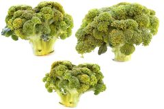 Broccoli Immagine Stock