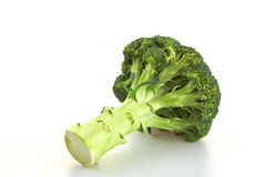 Broccoli royaltyfri foto
