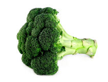 Broccoli Photo libre de droits