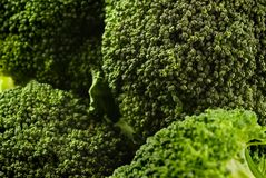 Broccoli Photo stock