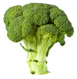 broccoli Arkivfoton