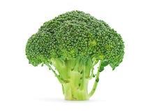 broccoli Royaltyfri Foto