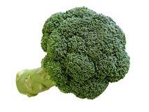 Broccoli Fotografie Stock Libere da Diritti