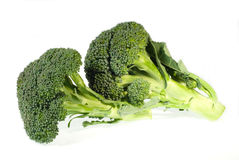 Broccoli. Isolated on a white background royalty free stock images