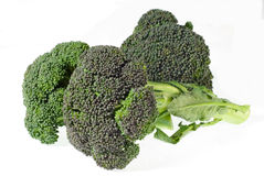 Broccoli. Isolated on a white background stock photography