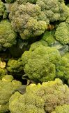 broccoli Stock Fotografie