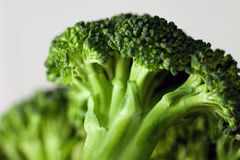 Broccoli 5. Photograph in study of vegetables, showing details Stock Photo