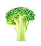 broccoli Photographie stock