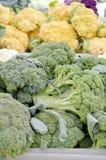 broccoli Royalty-vrije Stock Afbeeldingen