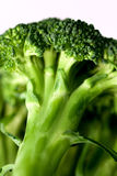 Broccoli 6. Photograph in study of vegetables, showing details Stock Photos