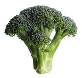 broccoli Royalty-vrije Stock Afbeelding
