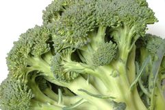 broccoli Royaltyfri Fotografi