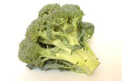 Broccoli. On white background stock image