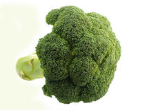 Broccoli. Head of broccoli isolated on white Royalty Free Stock Photography