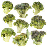 Broccoli. Stock Images