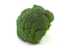 Broccoli. On a white background stock photography