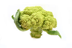 broccoli annan Royaltyfri Bild