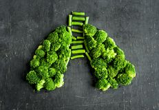 Broccoli and asparagus laid out in the form of human lungs. On a dark background. concept of a healthy lifestyle stock photography