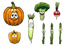 Broccoli, asparagus, radish,pumpkin and pepper Royalty Free Stock Images