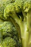 Broccoli Background Stock Photography