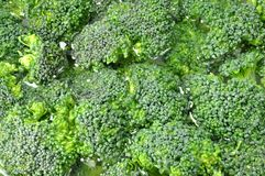 Broccoli background Stock Photos