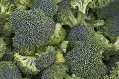 Broccoli Background Texture Royalty Free Stock Images