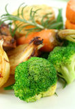 Broccoli And Baked Vegetables Stock Images
