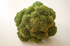 Broccoli. Big broccoli on a white background Stock Photo