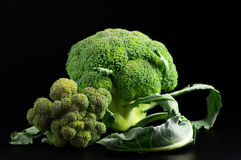 Broccoli on black Stock Images